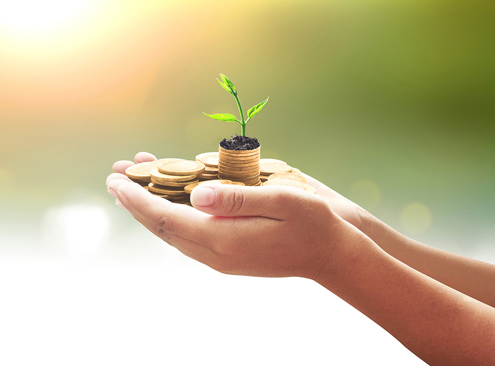 Person holding coins with plant growing out of them symbolizing environmentally conscious investing
